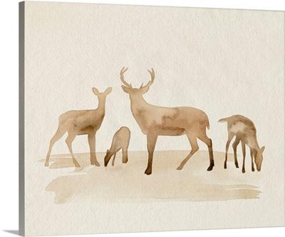 Whitetail Herd I