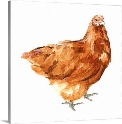 Wild Chicken I