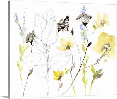 Wild Flowers & Contour I