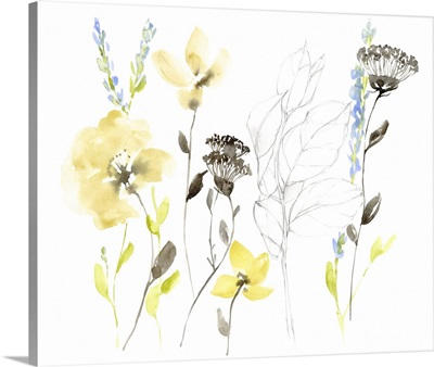 Wild Flowers & Contour II