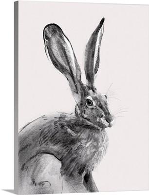 Wild Hare II