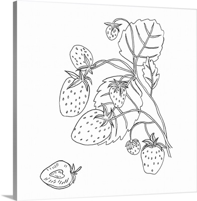 Wild Strawberries I