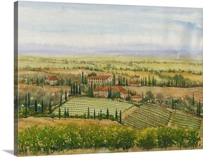 Wine Country View II