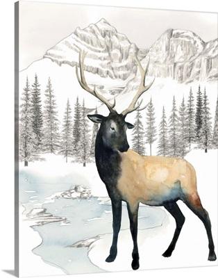 Winter Elk I