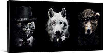 Classy Animals Special 1 Panorama
