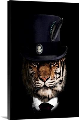 Classy Tiger
