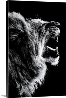 Dark Lion 2