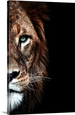 Lion Duet