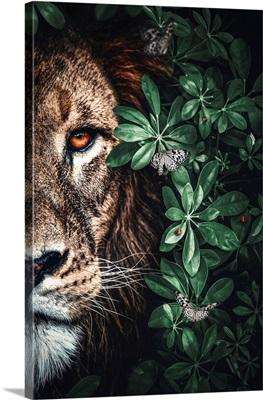 Lion Duet Jungle
