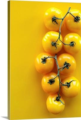 Yellow Tomatoes On Yellow