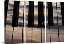 Play The Ocean