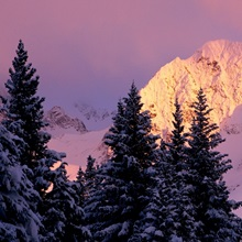 Chugach Mtns Bathed in Alpenglow Above Girdwood AK SC Winter