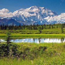 Mt.McKinley and the Alaska Range with kettle pond in foreground, Denali National Park