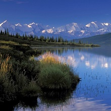Mt McKinley Reflects in Wonder Lake Denali NP AK IN Summer Alaska Range