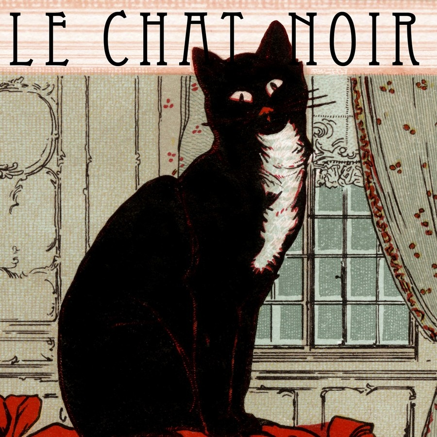 le chat noir poster framed nature