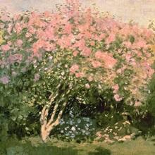 Lilac in the Sun, 1873
