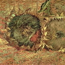 Two Cut Sunflowers, 1887