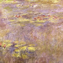 Waterlilies, after 1916