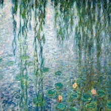 Waterlilies: Morning with Weeping Willows