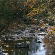 East Fork Of The Greenbrier River, West Virginia