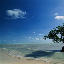 Long Key State Recreation Area, Florida Keys, Florida