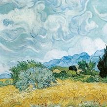 A Wheatfield