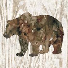 Pine Forest Bear