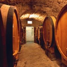 Wine Cask, Tuscany, Italy, Europe