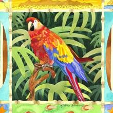 Surf Parrot