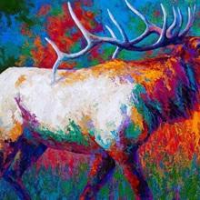 Autumn's Chorus Elk