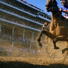 Close action shot of horses racing in the Kentucky Derby