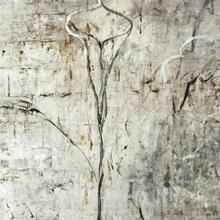 Silver Calla Lily