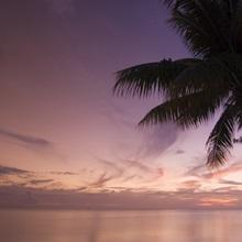 Rangiroa, Tuamotu Archipelago, French Polynesia, Pacific Islands