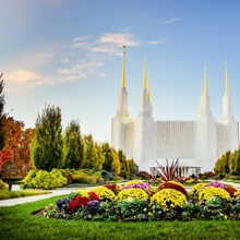 Washington DC Temple with Flowers, South Kensington, Maryland