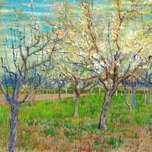 Orchard, 1888