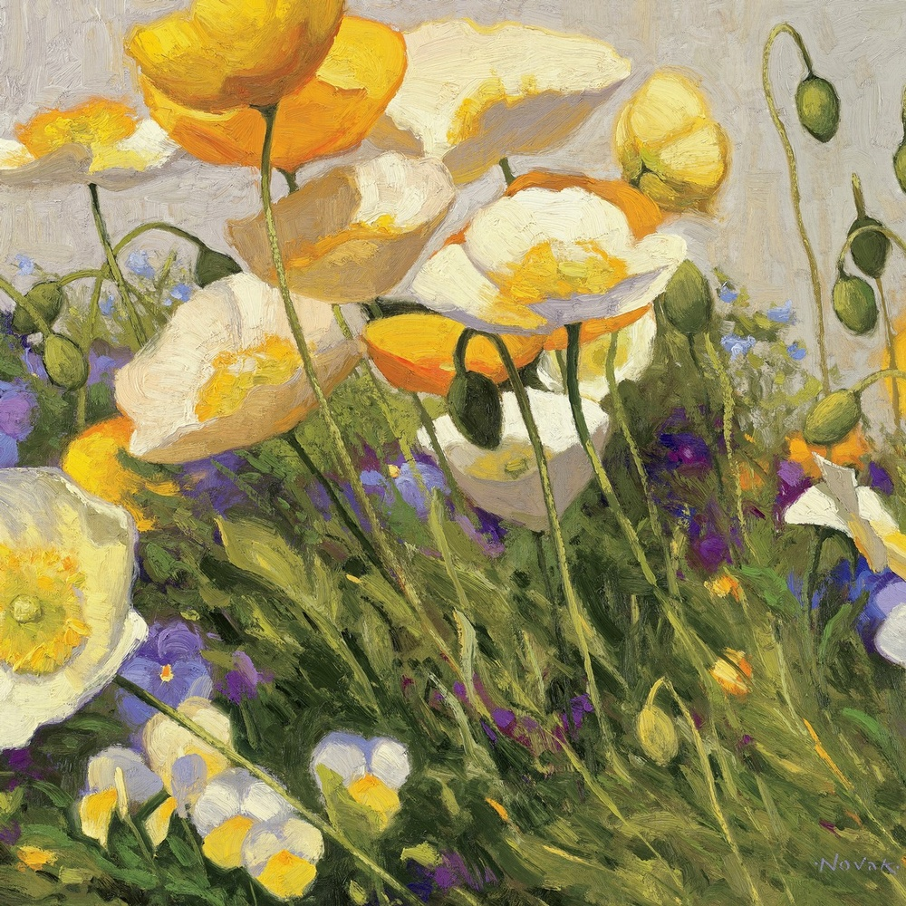 Poppies and Pansies I Wall Art, Canvas Prints, Framed Prints, Wall ...