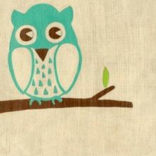 Best Friends - Owl